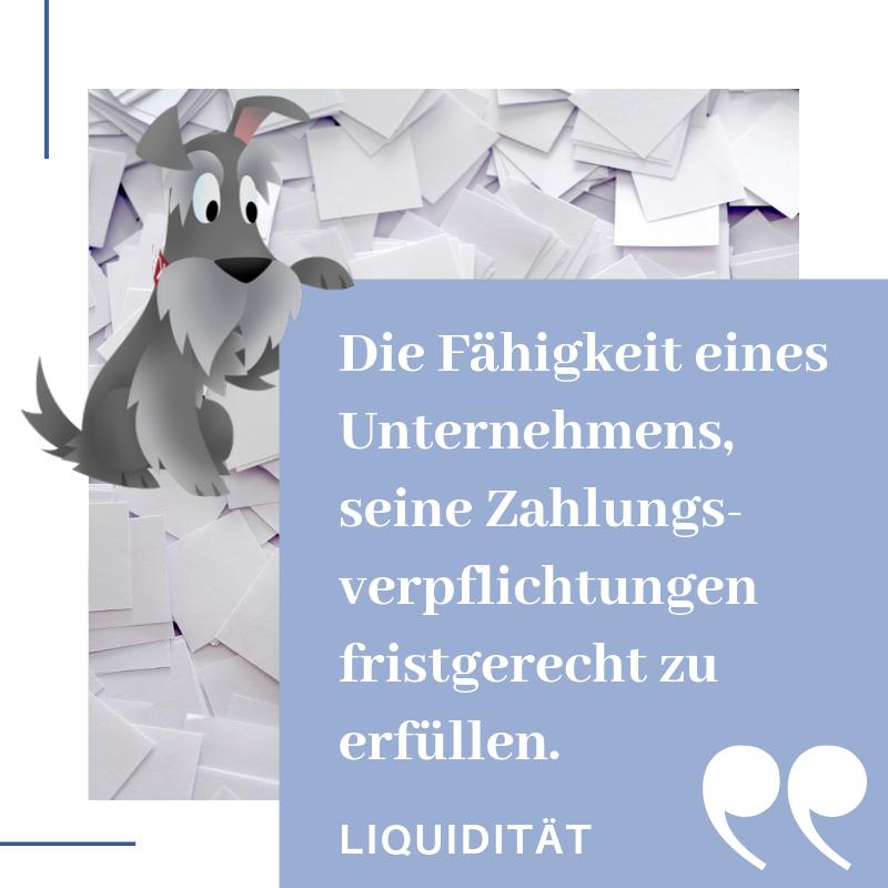 Definition Liquidität